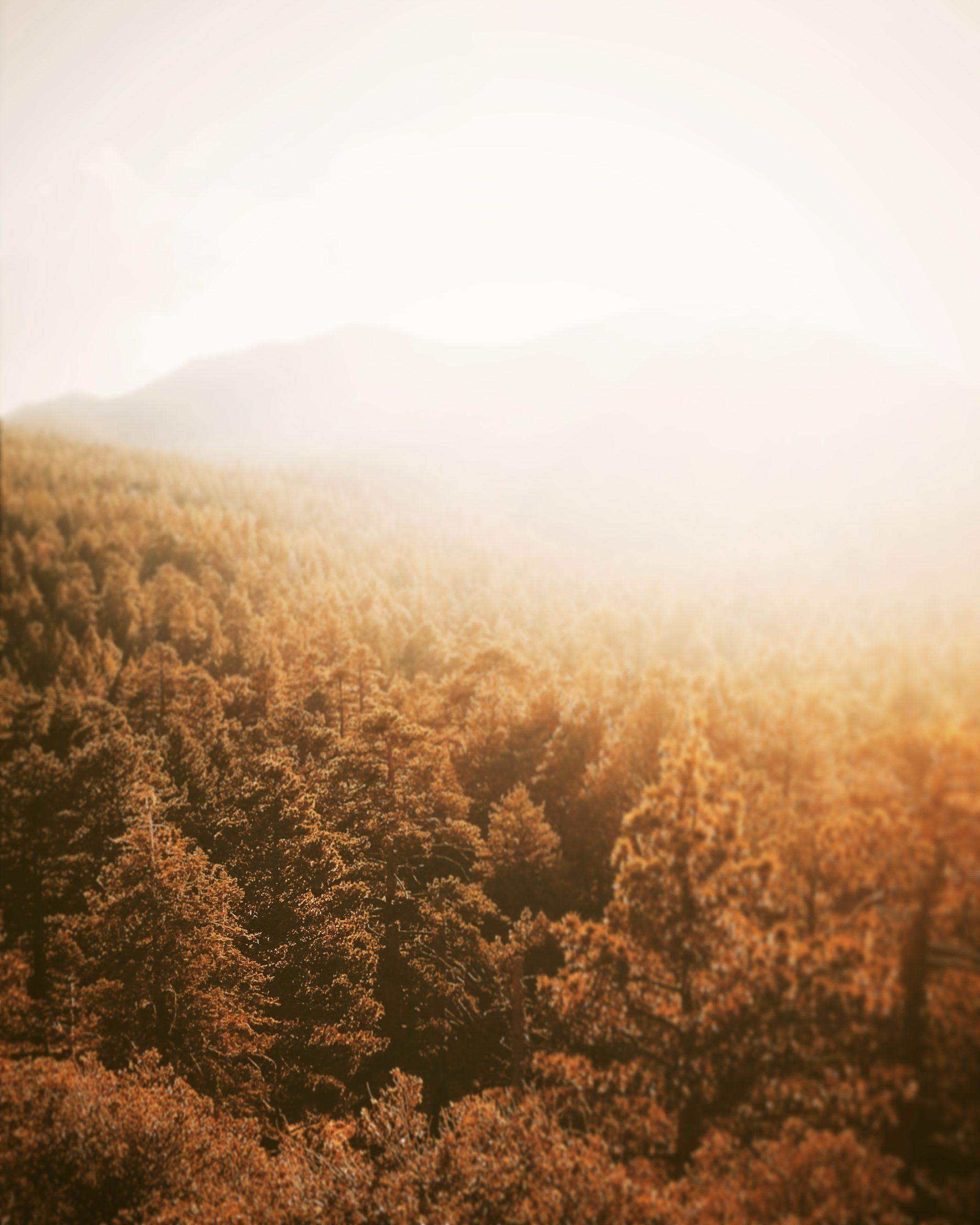 tourisme en automne